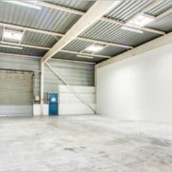 Location Local d'activités Orly 609 m²