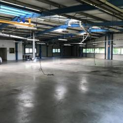 Location Local d'activités Domène 945 m²