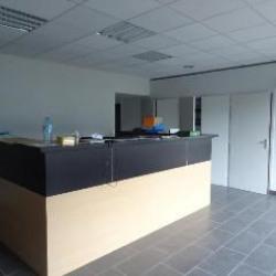 Location Local d'activités La Motte-Servolex 250 m²