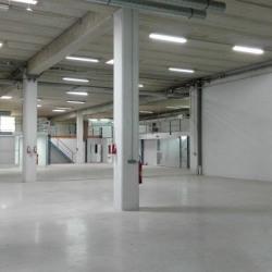 Vente Local d'activités Marolles-en-Brie 1230,5 m²