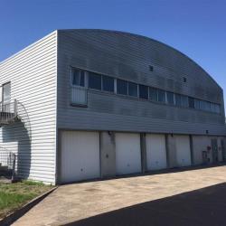 Location Local d'activités Saulxures-lès-Nancy 250 m²