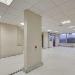 Location Bureau Paris 15ème 518 m²