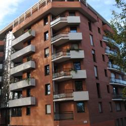 Vente Local d'activités Toulouse 246 m²