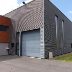 Location Local d'activités Guipavas 245 m²