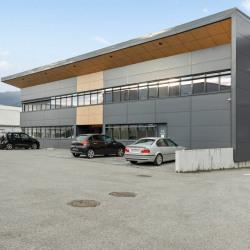 Location Local d'activités Challes-les-Eaux 550 m²