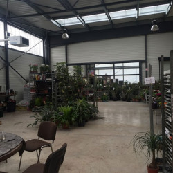 Vente Entrepôt Saint-Pierre-d'Irube 1100 m²