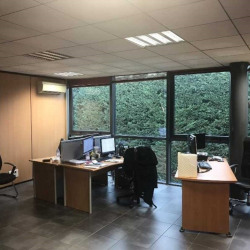 Location Bureau Saint-Jean 586,89 m²