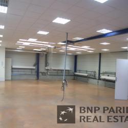 Vente Local d'activités Larçay 224 m²