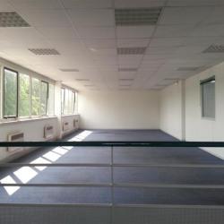 Location Local d'activités Saint-Thibault-des-Vignes 1230 m²