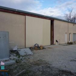 Location Local commercial Pierrelatte 280 m²