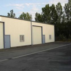 Location Local d'activités Saint-Orens-de-Gameville 240 m²