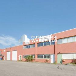 Location Local d'activités Saint-Pierre-de-Chandieu 516 m²