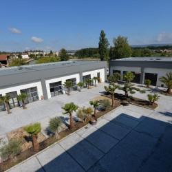Location Bureau Bourgoin-Jallieu 160 m²