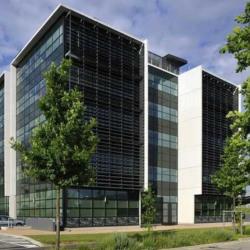 Location Bureau Lyon 8ème 447 m²