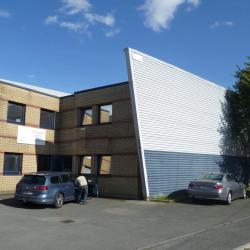 Location Local d'activités Lesquin 440 m²