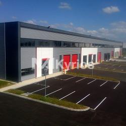 Location Local d'activités Meyzieu 6191 m²