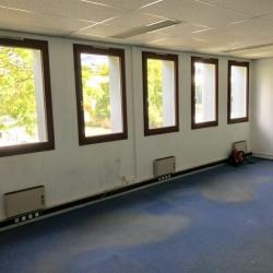 Location Bureau Colombes 37 m²