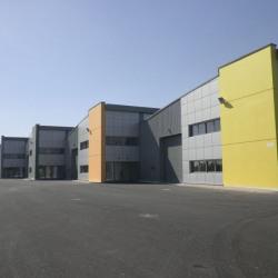 Location Local d'activités Ingré 513 m²