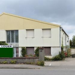 Location Local d'activités Essey-lès-Nancy (54270)