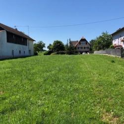Vente Terrain Muespach-le-Haut 900 m²