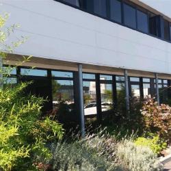 Location Bureau Colomiers 115 m²