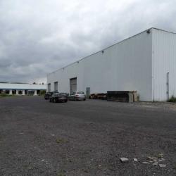 Location Entrepôt Épône 1200 m²