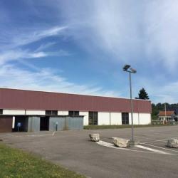 Vente Local d'activités Chaponost 22629 m²