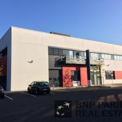 Location Local d'activités Dardilly 3358 m²