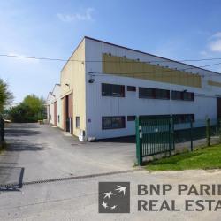 Location Local d'activités Chantepie 1175 m²