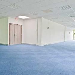 Location Bureau Lognes 170 m²