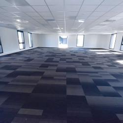 Location Bureau Auzeville-Tolosane 271 m²