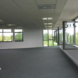Location Bureau Noisy-le-Roi 197 m²