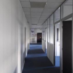 Location Local d'activités Villebon-sur-Yvette 2241 m²
