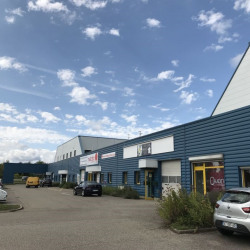 Location Local d'activités Sausheim 299 m²