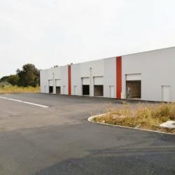 Location Local d'activités Saint-Apollinaire 130 m²