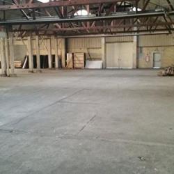 Location Local d'activités Lezoux 1040 m²