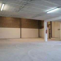 Location Local d'activités La Queue-en-Brie 310 m²