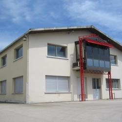 Location Local d'activités Longvic 300 m²