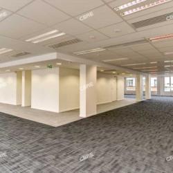 Location Bureau Ivry-sur-Seine 2188 m²