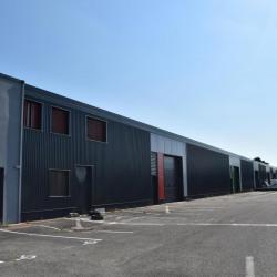 Vente Local d'activités Décines-Charpieu (69150)