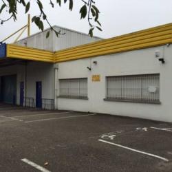 Location Entrepôt Geispolsheim 805 m²