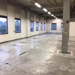 Location Entrepôt Sarcelles 580 m²