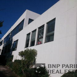 Location Bureau Sophia Antipolis 113 m²