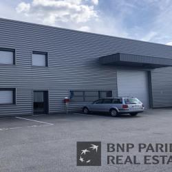 Location Local d'activités Chasse-sur-Rhône 572 m²