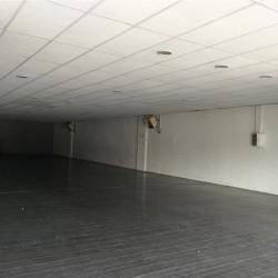 Location Local commercial Portet-sur-Garonne 320 m²