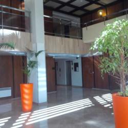 Location Bureau Marseille 6ème 176 m²