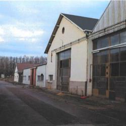 Vente Entrepôt Chalon-sur-Saône (71100)