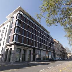 Location Bureau Lyon 2ème 296 m²