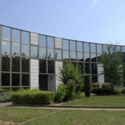 Vente Bureau Strasbourg 407 m²