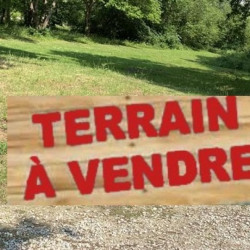 Vente Terrain Balma 10000 m²
